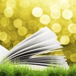 iStock photo; summer book; reading