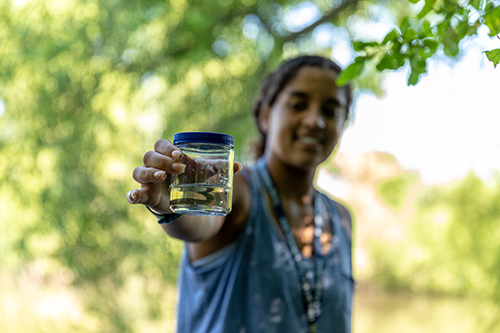 A student from Texas collects leeches on the Storrs campus this summer as part of a program launched by the Renzulli Center for Creativity, Gifted Education, and Talent Development. (Frank Zappulla/Neag School)
