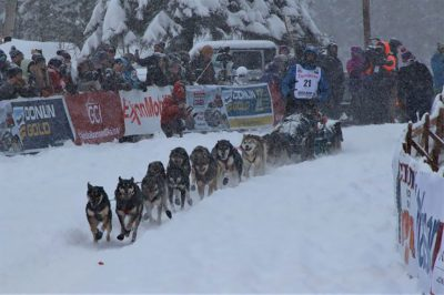 Musher Nicolas Petit on the Iditarod trail with his dog team.